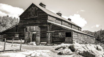 Black and white image of a barn .