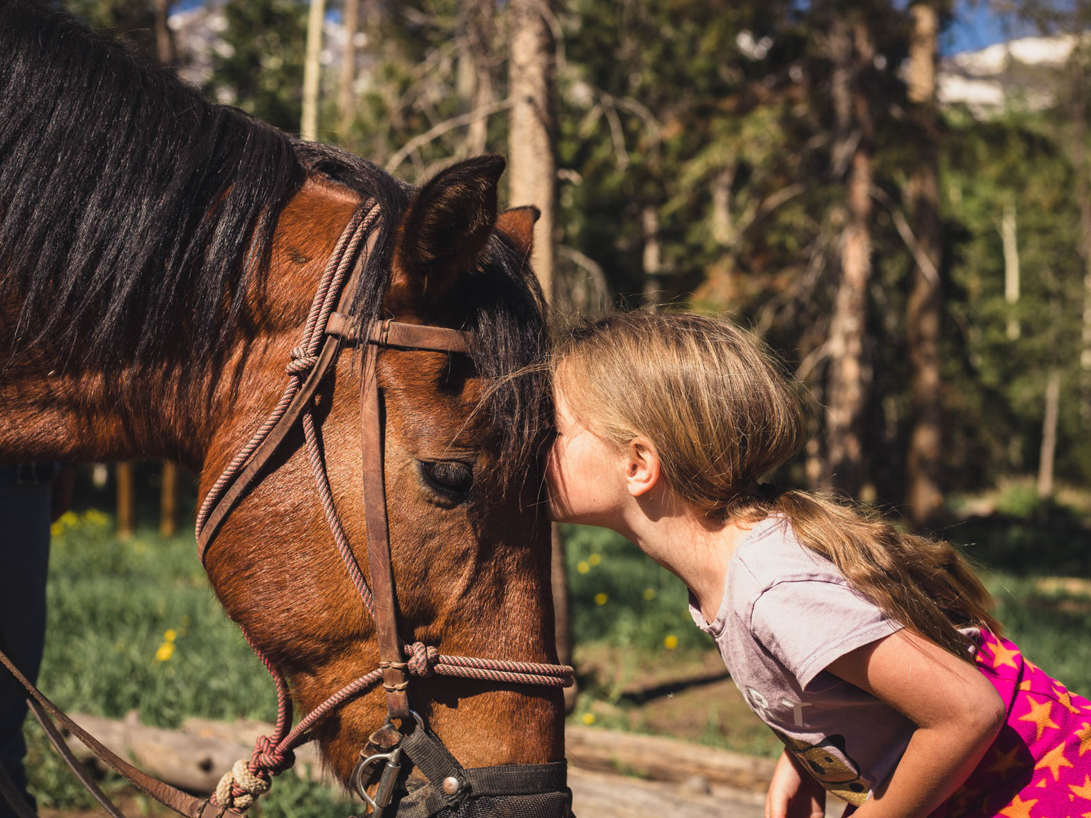 A little girl resting her head on a horse.